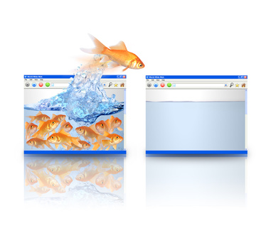 Gold Fish Moving to Better Website